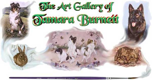 dog portraits, dog paintings, cat portraits, cat paintings, pet portraits, pet paintings by Tamara Burnett
